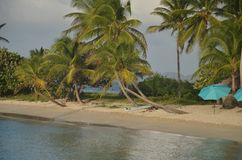 Surfboard and parasol on small Caribbean beach strip stock image