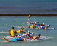 Surfboard Polo Stock Photo