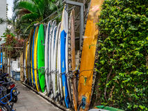 Surfboard rentals waikiki Stock Photography