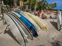 Surfboard rentals, Waikiki Royalty Free Stock Photos