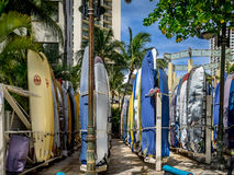Surfboard rentals, Waikiki Stock Photos