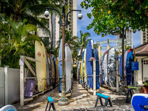 Surfboard rentals, Waikiki Stock Images