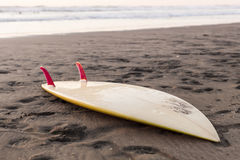 Surfboard on sand Stock Images