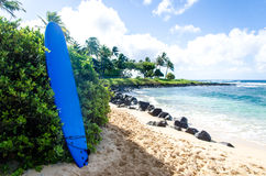 Surfboard on the sandy beach in Hawaii Royalty Free Stock Image