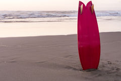 Surfboard Standing Royalty Free Stock Image