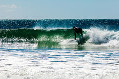 Surfboard surfer rides wave ocean surf Stock Images