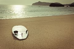 Surfboard on the wild beach Royalty Free Stock Images