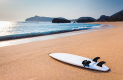 Surfboard on the wild beach. Of Sumbawa, Indonesia Stock Photo