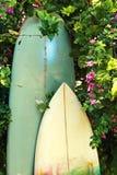 Surfboards и †девиза «едят, спят, занимаются серфингом Стоковое Изображение