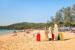 Surfboards на тропическом пляже - весьма тело спорта всходит на борт Стоковая Фотография RF