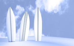 surfboards Fotografia Royalty Free
