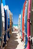 Surfboards. Rainbow surfboards in waikiki hawaii near beach Royalty Free Stock Photography