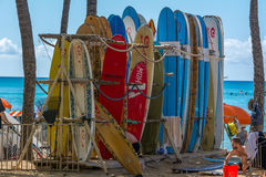 surfboards Imagem de Stock