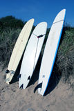 Surfboards on beach. Surfboards on a beach in montauk Royalty Free Stock Photo