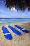 Surfboards at beach Royalty Free Stock Photo