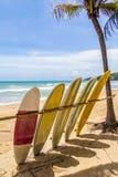 Surfboards dla dzierżawienia zdjęcia royalty free