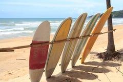 Surfboards dla dzierżawienia obrazy stock