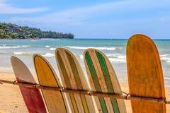 Surfboards dla dzierżawienia zdjęcie royalty free