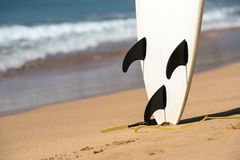Surfboards lays on the tropical beach.  Royalty Free Stock Images