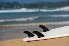 Surfboards lays on the tropical beach Stock Images