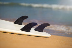 Surfboards lays on the tropical beach Royalty Free Stock Image