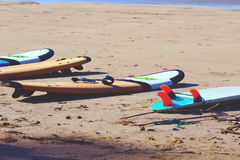 Surfboards lie on the yellow sand Stock Photography