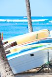 Surfboards lined up between two coconut trees on the beach. Ocean waves in the background Stock Images