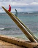 Surfboards przy odpoczynkiem obraz royalty free