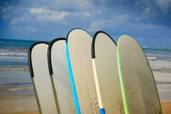 Surfboards for rent on seaside. Beach Stock Photography