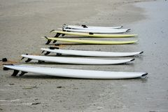 Surfboards in sand on the beach ocean Royalty Free Stock Images
