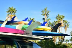 Surfboards stacked on car roof tropical Baja, Mexico stock photography