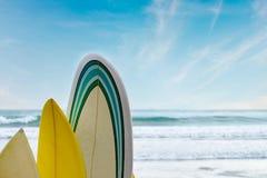Surfboards stoją z rzędu przeciw niebieskiemu niebu i falom zdjęcie stock