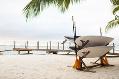 Surfboards on tropical beach Stock Photo