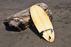 Surfbrett auf einem treestump auf volcanix Sandstrand Stockbild