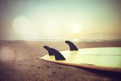 Surfbrett auf Strand bei Sonnenuntergang Lizenzfreie Stockbilder