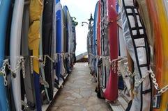 Surfbretter. Stockfotografie