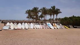 Surfbretter stehen in Folge stock footage