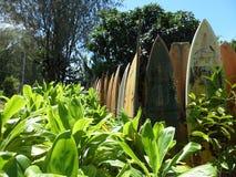 Surfbrettzaun Stockbild