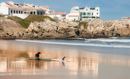 Surfen in Baleal stockfotografie
