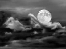 Surfen der Nacht Stockbilder