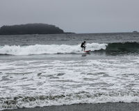 Surfen nahe Tofino Stockbild