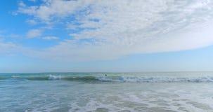 Surfer που κάνει σερφ στη θάλασσα 4k απόθεμα βίντεο
