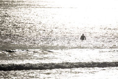 Surfer που σκιαγραφείται Στοκ εικόνα με δικαίωμα ελεύθερης χρήσης