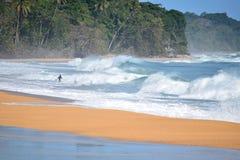 Surfer στα κύματα της καραϊβικής θάλασσας στην παραλία του Bluff στοκ φωτογραφία με δικαίωμα ελεύθερης χρήσης