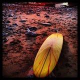 Surfer στο οξύ Στοκ Εικόνα