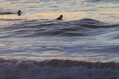 Surfer στο τέλος εδαφών του Σαν Φρανσίσκο Στοκ εικόνες με δικαίωμα ελεύθερης χρήσης