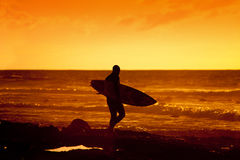 Surfer Royalty Free Stock Images