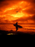 Surfer images stock