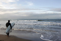 Free Surfer Stock Photography - 457442