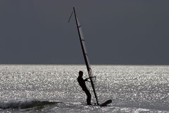 Surfer. Young windsurfer Stock Photography
